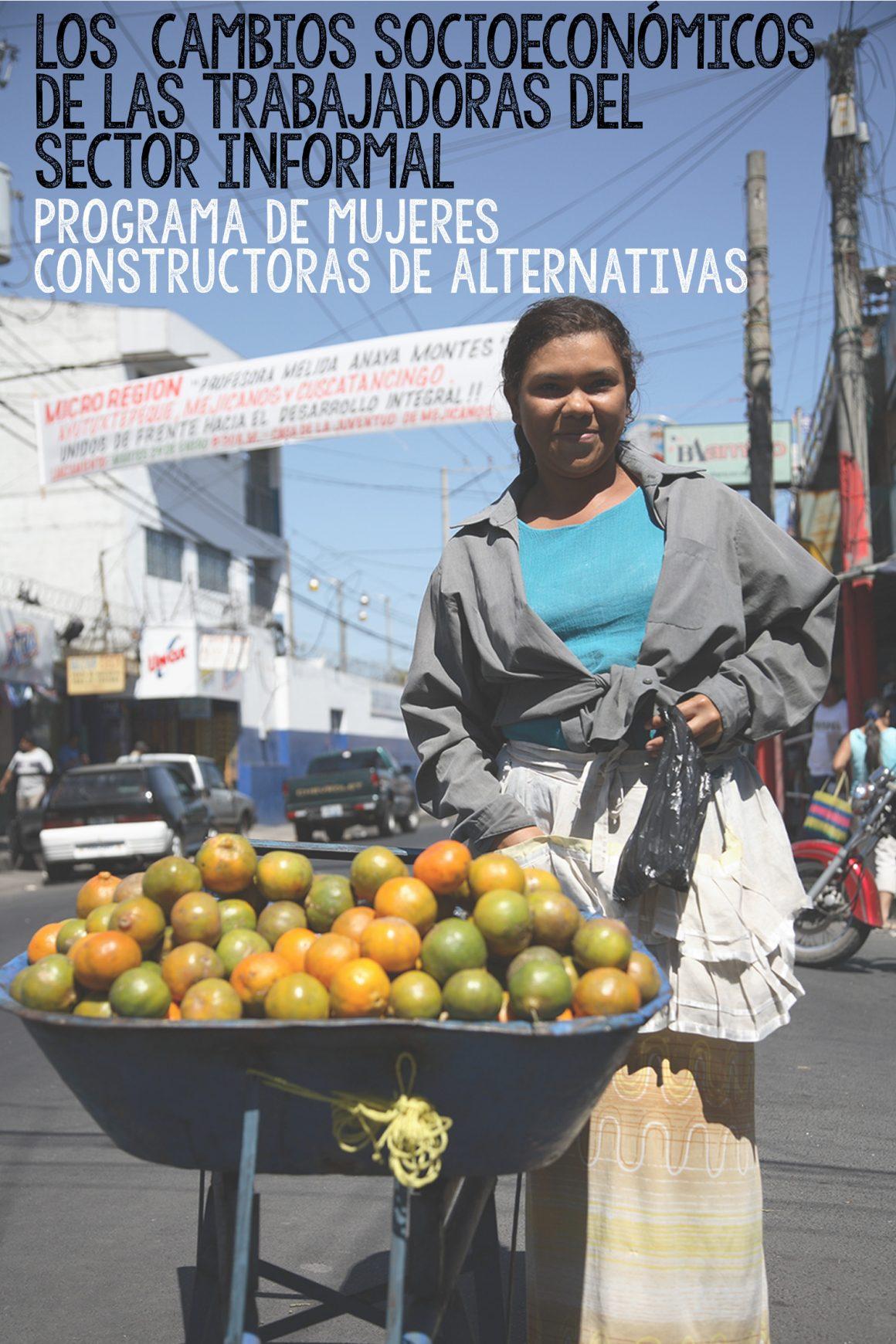 Cambios Socioeconómicos de las Trabajadoras del Sector Informal (2010)